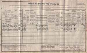 1911 Census listing Anne Roberts, Domestic Servant at Plas yn Llan, Llangynhafal, Ruthin.
